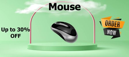 Mouse-01